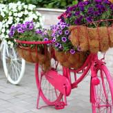 Zoom sur le vélo fleuri en 5 idées
